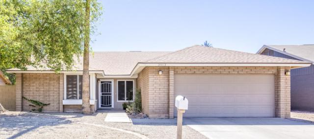 3013 N Salida Del Sol, Chandler, AZ 85224 (MLS #5776238) :: Lux Home Group at  Keller Williams Realty Phoenix