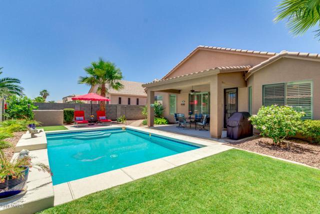 43528 W Sansom Drive, Maricopa, AZ 85138 (MLS #5776250) :: Essential Properties, Inc.