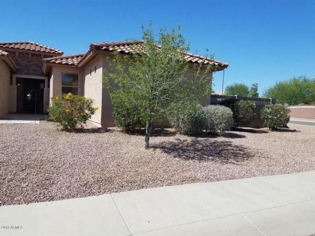 30352 W Whitton Avenue, Buckeye, AZ 85396 (MLS #5776279) :: The Sweet Group