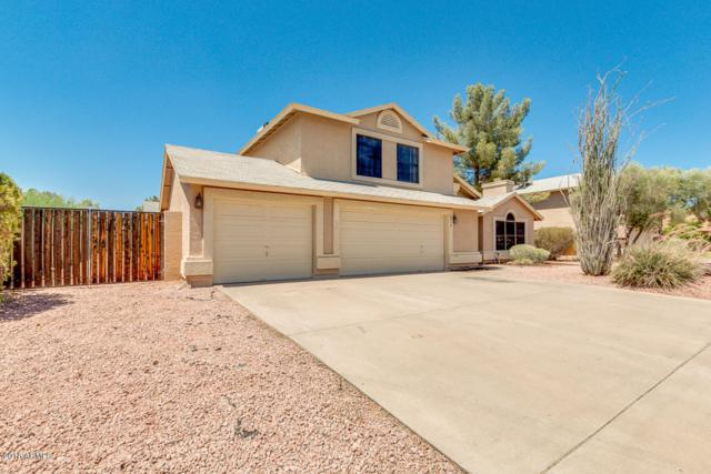 2916 E Lockwood Street, Mesa, AZ 85213 (MLS #5776312) :: Essential Properties, Inc.