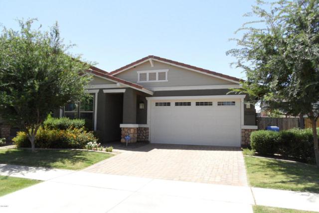 4259 E Mesquite Street, Gilbert, AZ 85296 (MLS #5776357) :: Kepple Real Estate Group