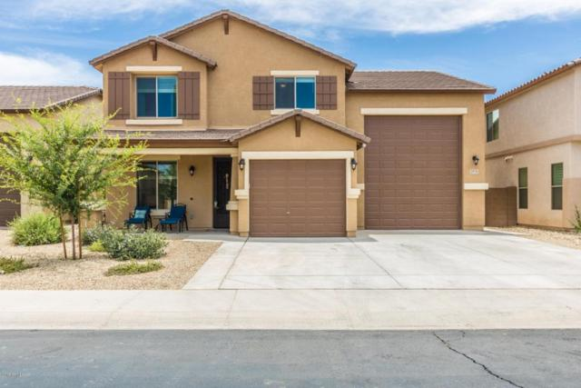 25731 N Cinch Drive, Peoria, AZ 85383 (MLS #5776374) :: My Home Group