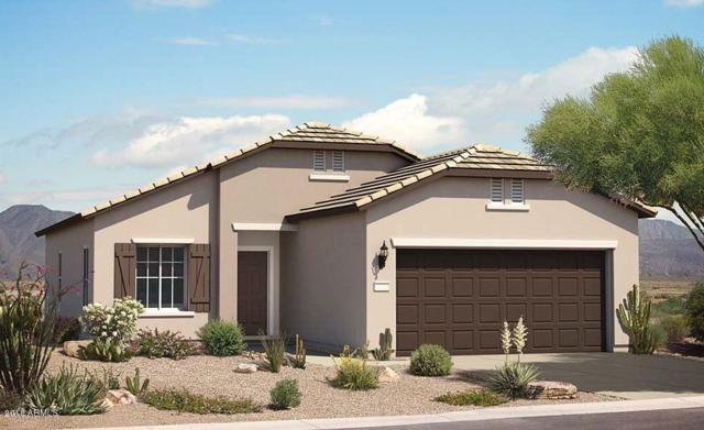 6895 W Sonoma Way, Florence, AZ 85132 (MLS #5776406) :: My Home Group