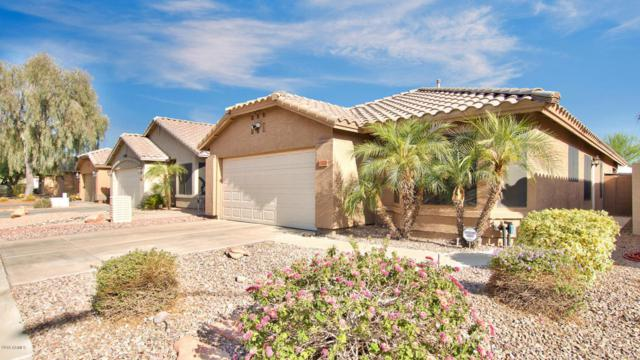 3225 E Tonopah Drive, Phoenix, AZ 85050 (MLS #5776419) :: The Everest Team at My Home Group