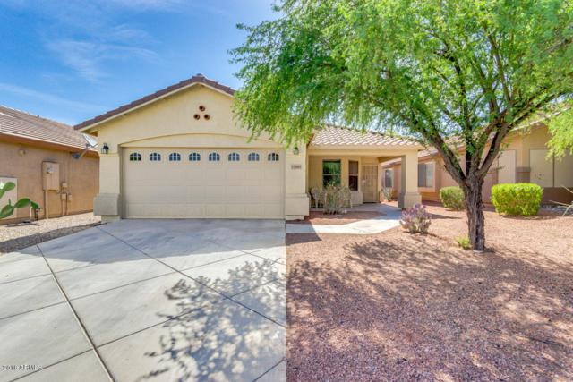 33485 N Stone Ridge Drive, San Tan Valley, AZ 85143 (MLS #5776454) :: My Home Group