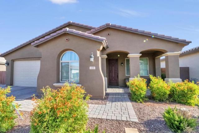 178 W Winterberry Avenue, San Tan Valley, AZ 85140 (MLS #5776522) :: My Home Group