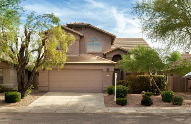 4708 E Adobe Drive, Phoenix, AZ 85050 (MLS #5776558) :: Essential Properties, Inc.