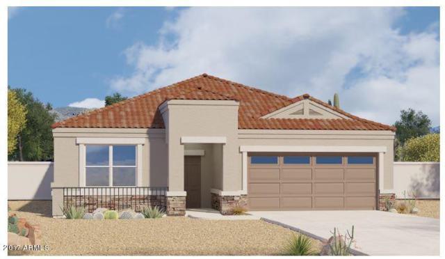 16666 N Luna Drive, Maricopa, AZ 85138 (MLS #5776586) :: The Daniel Montez Real Estate Group