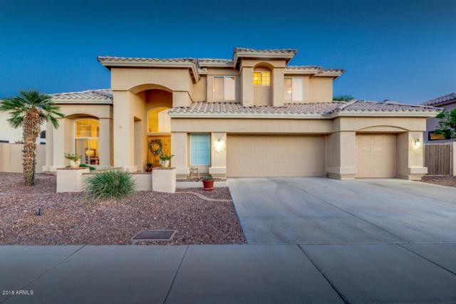 6345 W Louise Drive, Glendale, AZ 85310 (MLS #5776597) :: Yost Realty Group at RE/MAX Casa Grande