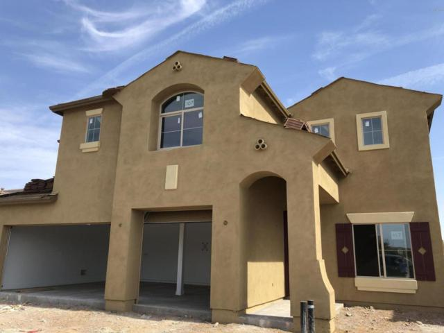 11465 E Seaver Avenue, Mesa, AZ 85212 (MLS #5776614) :: Lifestyle Partners Team