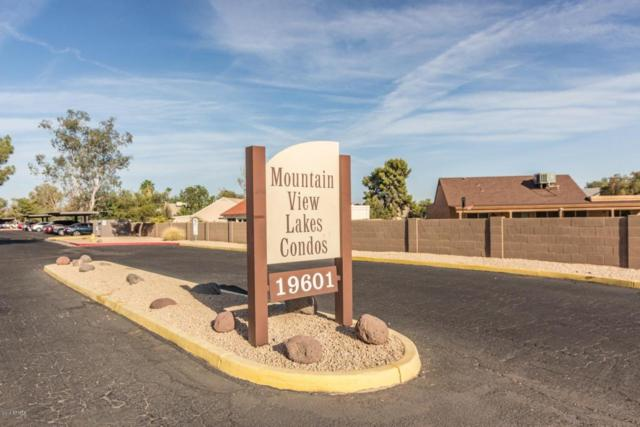 19601 N 7TH Street #1048, Phoenix, AZ 85024 (MLS #5776621) :: Riddle Realty