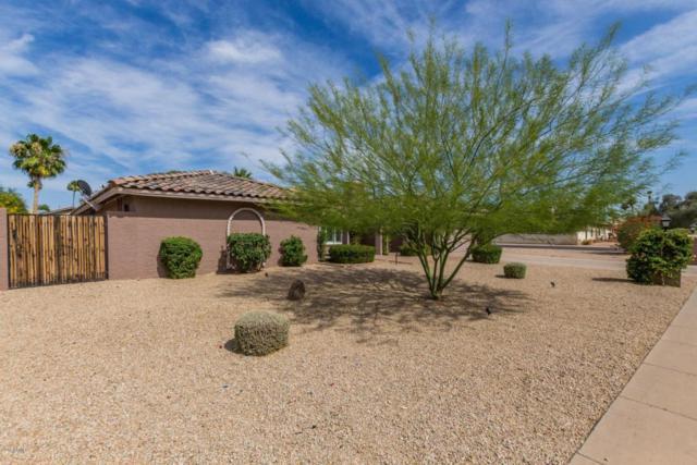 14215 N 63RD Street, Scottsdale, AZ 85254 (MLS #5776667) :: The Everest Team at My Home Group