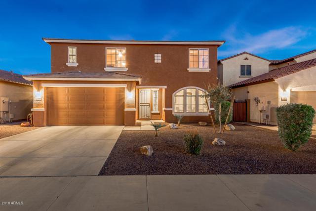 12049 W Alex Court, Sun City, AZ 85373 (MLS #5776669) :: My Home Group