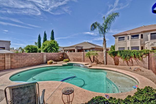 14869 W Cortez Street, Surprise, AZ 85379 (MLS #5776676) :: The Everest Team at My Home Group