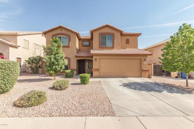1695 E Magnum Road, San Tan Valley, AZ 85140 (MLS #5776709) :: My Home Group