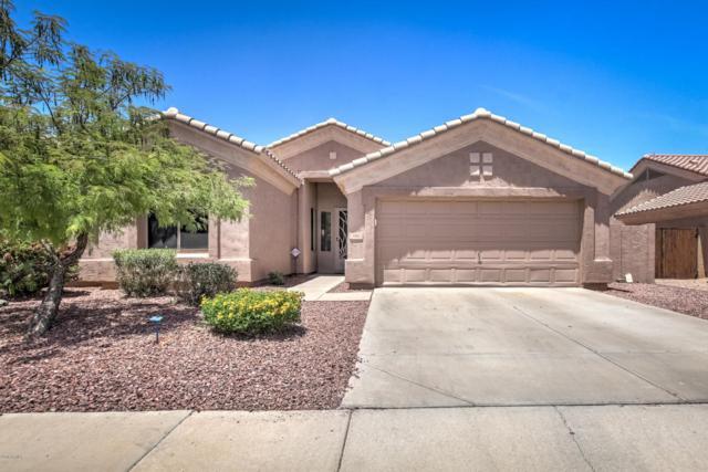 1352 W Longhorn Drive, Chandler, AZ 85286 (MLS #5776759) :: My Home Group