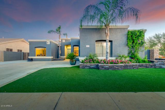 1847 E Carob Drive, Chandler, AZ 85286 (MLS #5776773) :: Lifestyle Partners Team