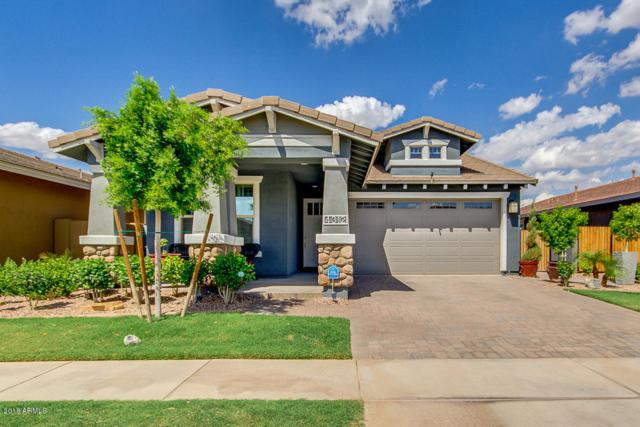 4312 E Rawhide Street, Gilbert, AZ 85296 (MLS #5776783) :: Riddle Realty