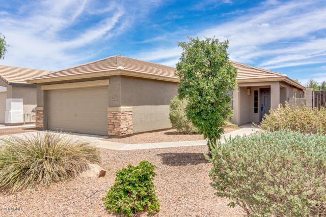 4241 E Sundance Avenue, Gilbert, AZ 85297 (MLS #5776818) :: Lux Home Group at  Keller Williams Realty Phoenix