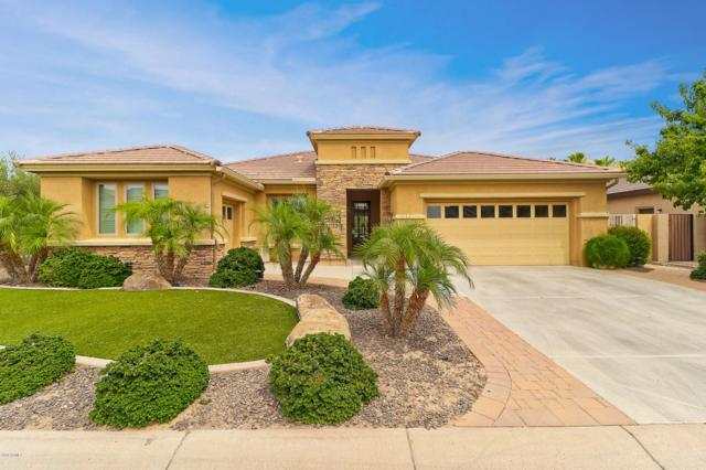 2181 N 165TH Avenue, Goodyear, AZ 85395 (MLS #5776851) :: Kortright Group - West USA Realty