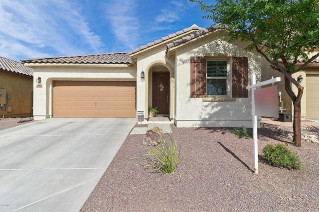 21838 N 119TH Drive, Sun City, AZ 85373 (MLS #5776875) :: My Home Group