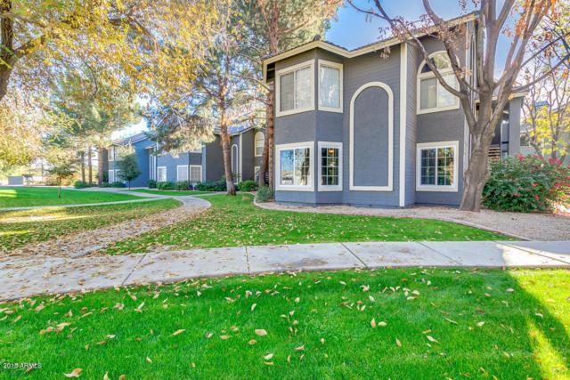 255 S Kyrene Road #206, Chandler, AZ 85226 (MLS #5776885) :: Essential Properties, Inc.
