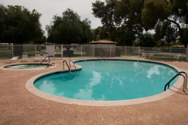 131 N Higley Road #102, Mesa, AZ 85205 (MLS #5776895) :: My Home Group