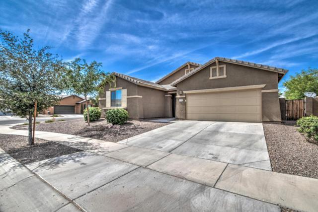 8770 W Lamar Road, Glendale, AZ 85305 (MLS #5776916) :: My Home Group