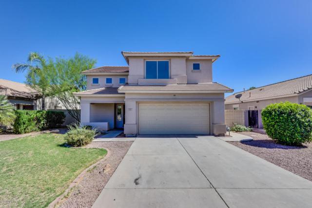 3669 E Remington Drive, Gilbert, AZ 85297 (MLS #5776976) :: My Home Group