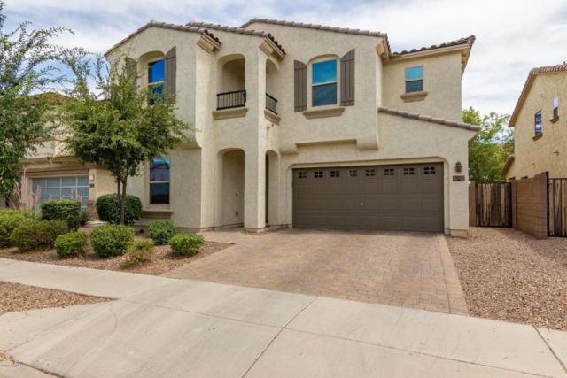 3031 E Ivanhoe Street, Gilbert, AZ 85295 (MLS #5776981) :: Essential Properties, Inc.