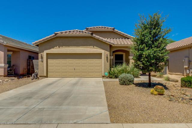 36136 N Murray Grey Drive, San Tan Valley, AZ 85143 (MLS #5777005) :: Lux Home Group at  Keller Williams Realty Phoenix