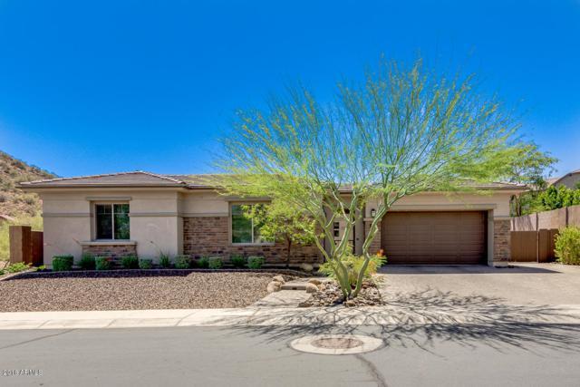 28338 N 67TH Drive, Peoria, AZ 85383 (MLS #5777016) :: My Home Group