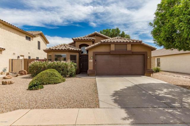9837 E Osage Avenue, Mesa, AZ 85212 (MLS #5777024) :: The Everest Team at My Home Group