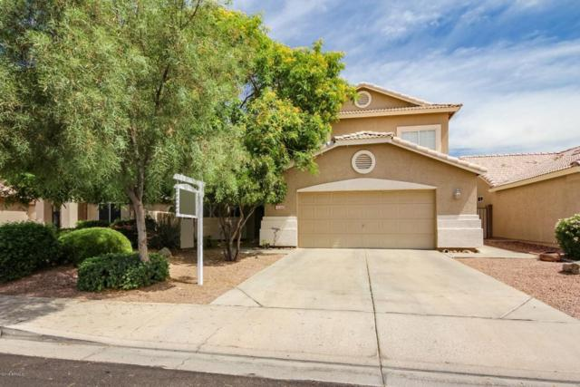 9224 W Davis Road, Peoria, AZ 85382 (MLS #5777054) :: My Home Group