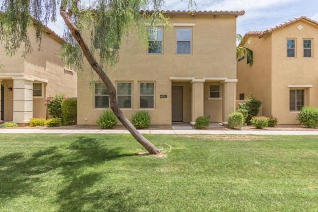 3466 S Swan Drive, Gilbert, AZ 85297 (MLS #5777055) :: My Home Group