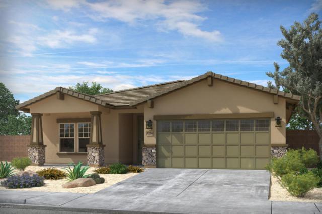 42455 W Ramirez Drive, Maricopa, AZ 85138 (MLS #5777061) :: My Home Group