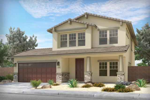 42497 W Ramirez Drive, Maricopa, AZ 85138 (MLS #5777116) :: Revelation Real Estate