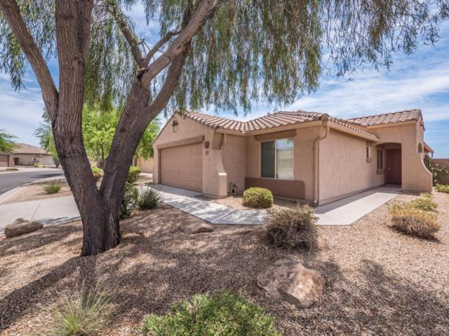 10331 E Excavation Court, Gold Canyon, AZ 85118 (MLS #5777173) :: My Home Group