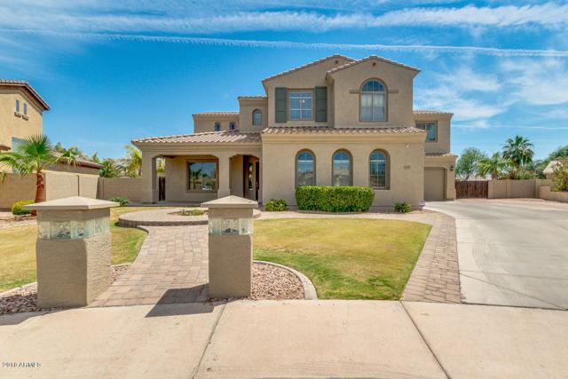 1247 E Ibis Court, Gilbert, AZ 85297 (MLS #5777175) :: My Home Group