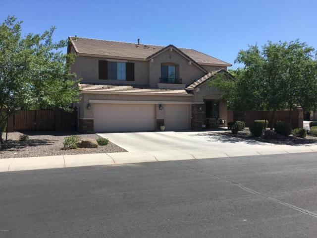 11063 E Rembrandt Avenue, Mesa, AZ 85212 (MLS #5777272) :: My Home Group