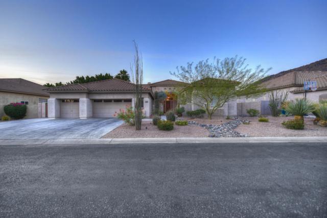 13358 E Del Timbre Drive, Scottsdale, AZ 85259 (MLS #5777328) :: Essential Properties, Inc.