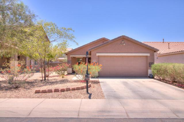 35981 W Costa Blanca Drive, Maricopa, AZ 85138 (MLS #5777367) :: The Everest Team at My Home Group