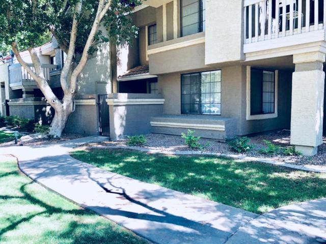 1905 E University Drive Q129, Tempe, AZ 85281 (MLS #5777377) :: My Home Group