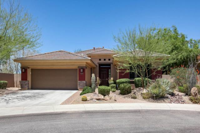 3808 E Morning Dove Trail, Phoenix, AZ 85050 (MLS #5777406) :: The Garcia Group