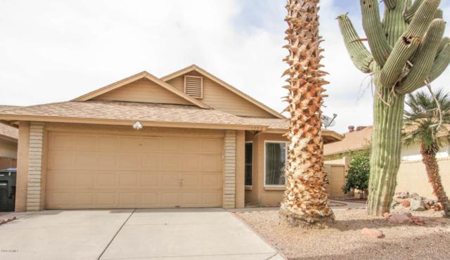 1728 E Villa Maria Drive, Phoenix, AZ 85022 (MLS #5777416) :: The Jesse Herfel Real Estate Group