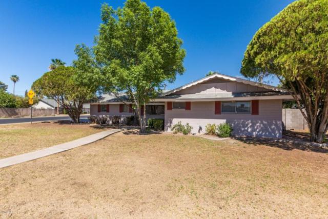 559 N Temple Street, Mesa, AZ 85203 (MLS #5777478) :: Lux Home Group at  Keller Williams Realty Phoenix