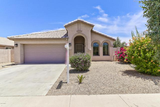 397 S 151ST Avenue, Goodyear, AZ 85338 (MLS #5777482) :: My Home Group