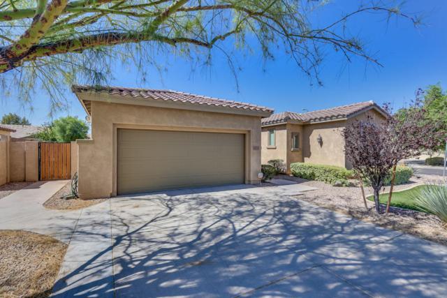 453 W Lantana Place, Chandler, AZ 85248 (MLS #5777486) :: The Garcia Group @ My Home Group