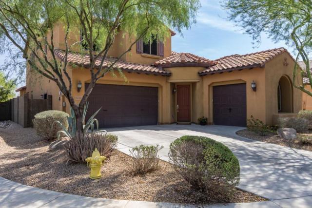 3714 E Zachary Drive, Phoenix, AZ 85050 (MLS #5777493) :: My Home Group
