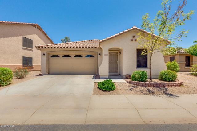 3005 S Mandy Circle, Mesa, AZ 85212 (MLS #5777534) :: The Everest Team at My Home Group